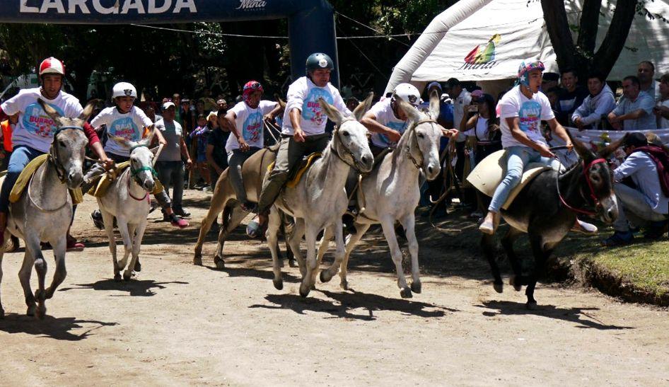 Rally de Burros 2019